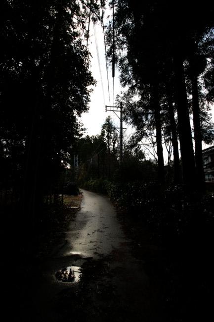 A 散歩 05.JPG