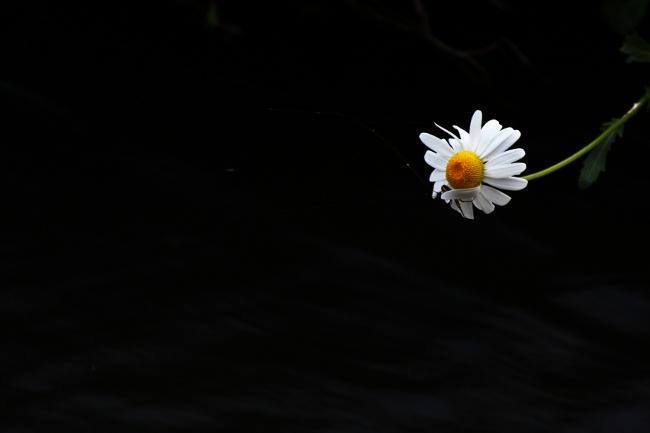A6月5日07.JPG