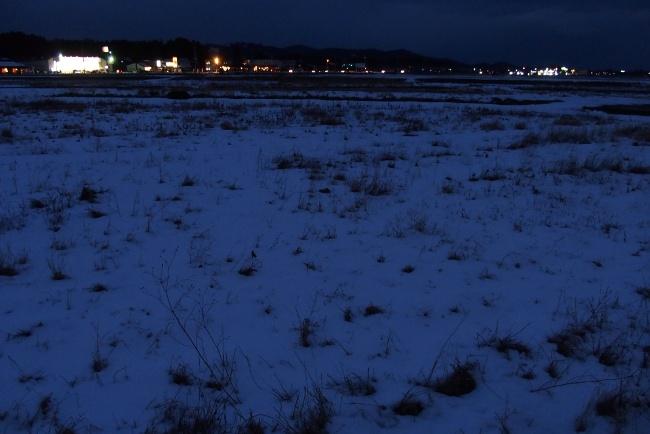 AAA冬景02.JPG
