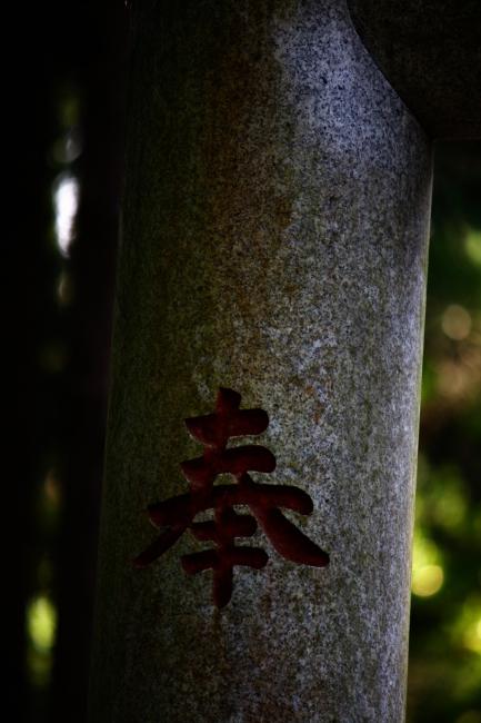 A散歩08.JPG