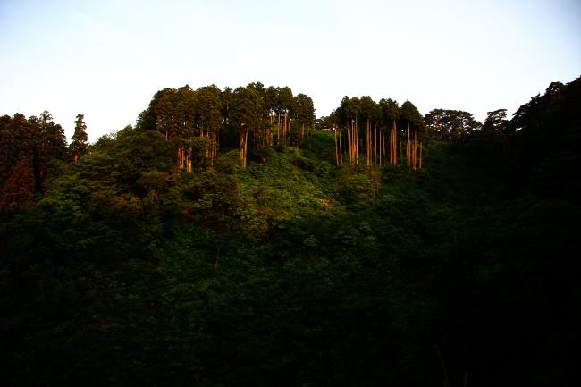 A春日山01.JPG