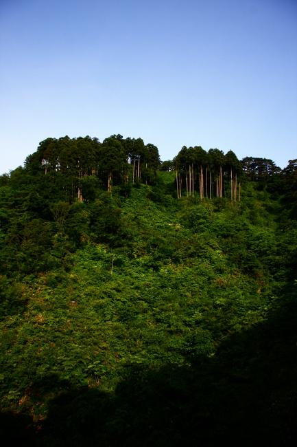 A春日山02.JPG