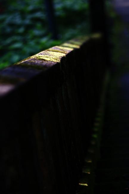 A春日山神社23.JPG