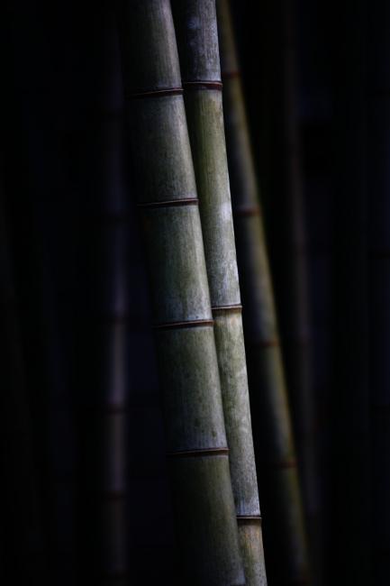B窓景39.JPG