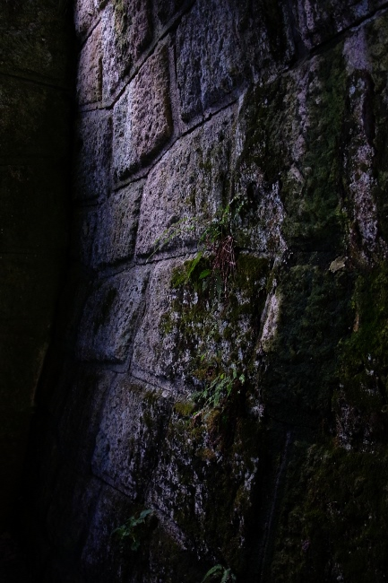 C山寺12.JPG
