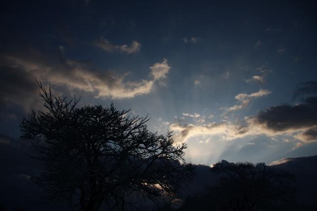 公園雪景01.JPG