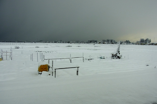 冬景09.jpg