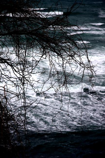 冬海23.jpg
