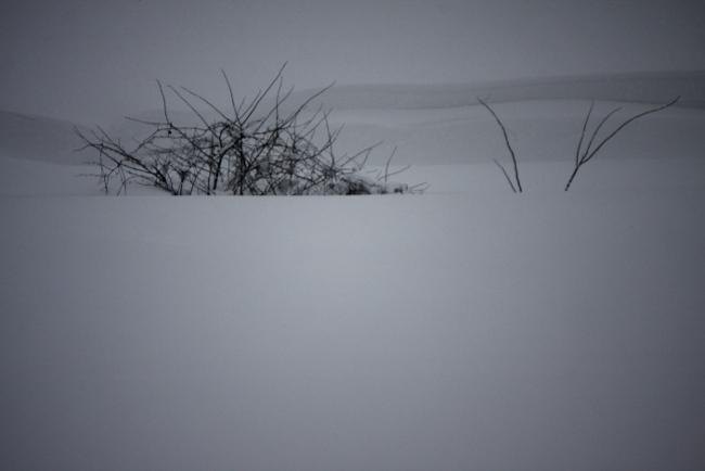 冬空11.JPG