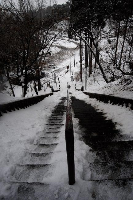 春日山神社22.JPG