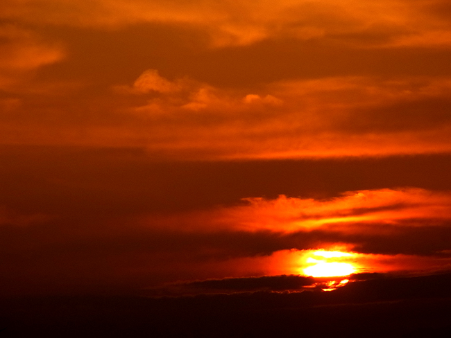 朝陽06.jpg