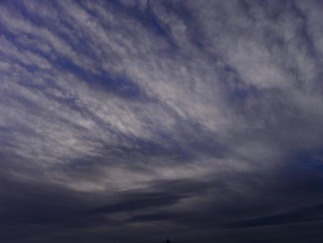 朝雲01.jpg