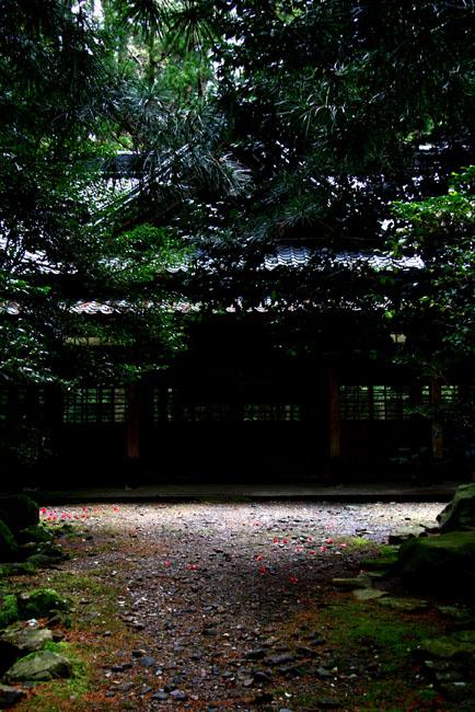 神社06.jpg