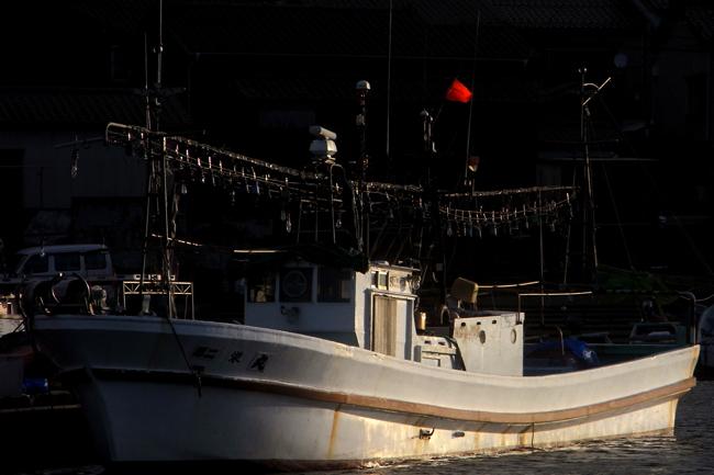稲鯨59.jpg