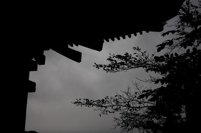 青木07.jpg