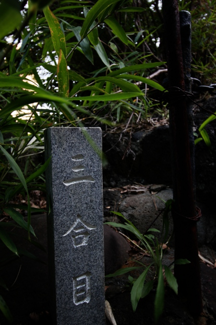 A 品川神社03.JPG