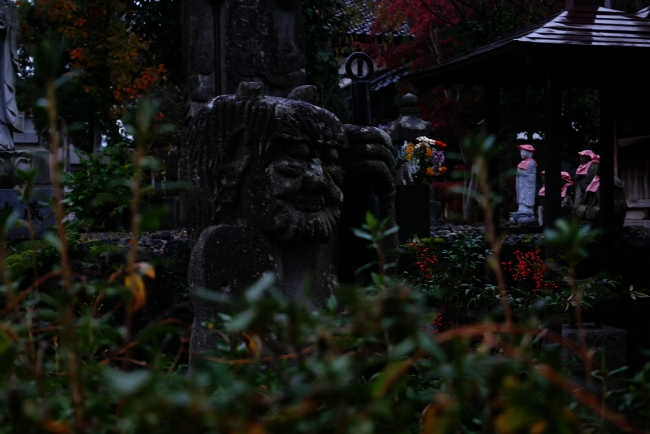 A 寺町散歩 09.JPG