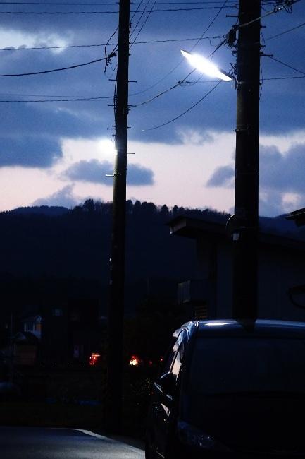 A 散歩 092.JPG