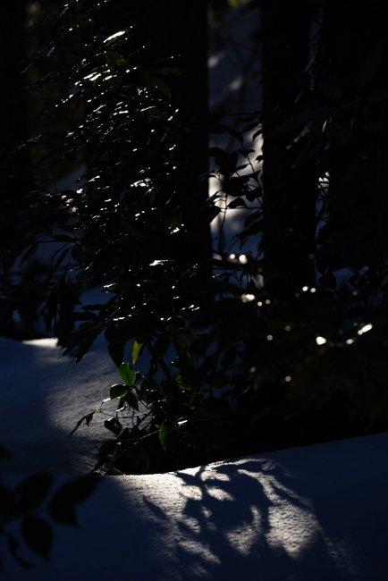 A 春日山 31.JPG