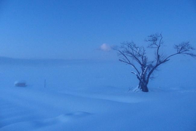 A 雪景 15.JPG