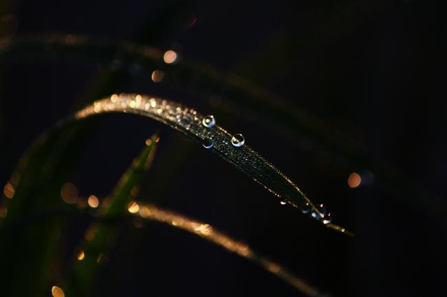 A6月24日16.JPG