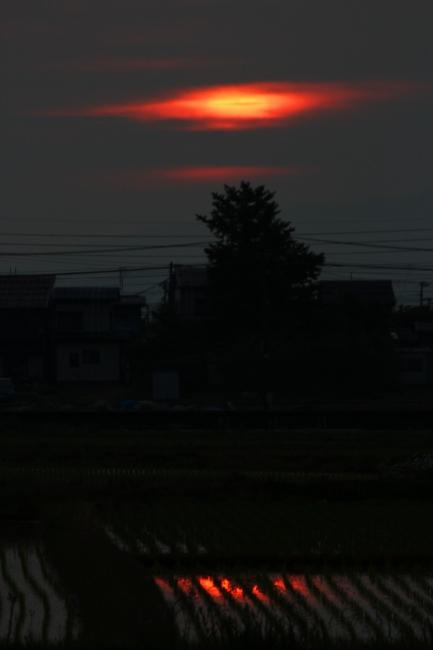 A6月5日06.JPG