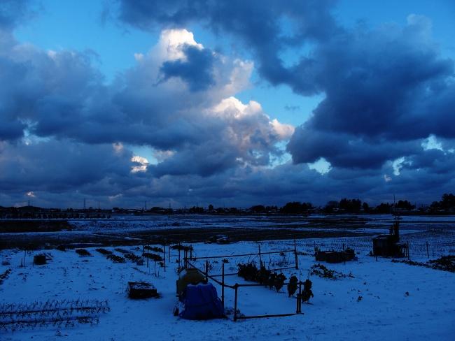 AA冬景01.JPG