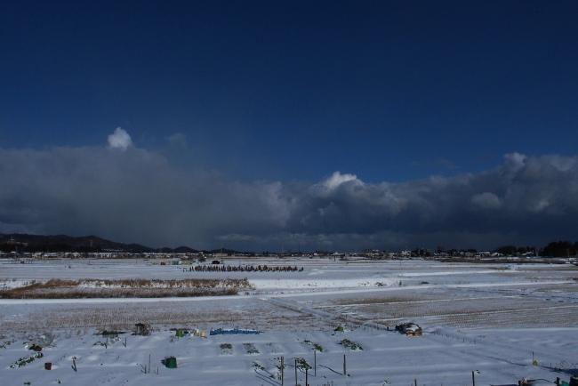 AA冬景09.JPG