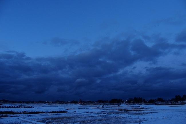 AA冬景11.JPG