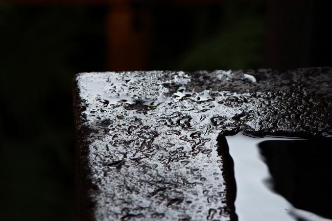A品川神社13.JPG