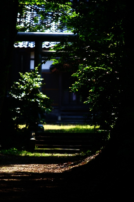 A散歩03.JPG