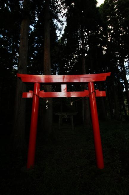 A春日山05.JPG