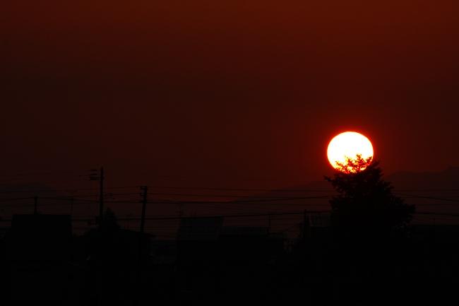 A朝陽02.JPG