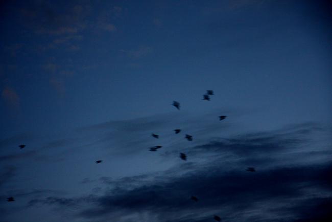 九月の空31.jpg
