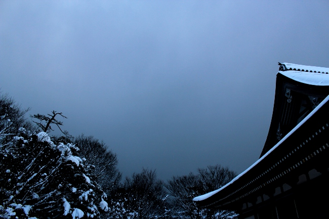 五智・国分寺106.JPG
