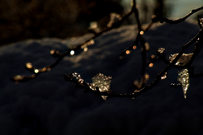 冬景29.jpg