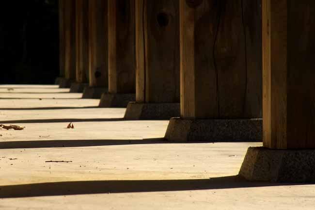 国分寺11.jpg