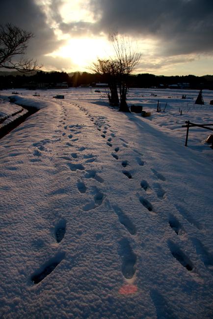 春雪28.jpg