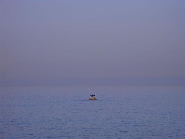 海岸07.jpg