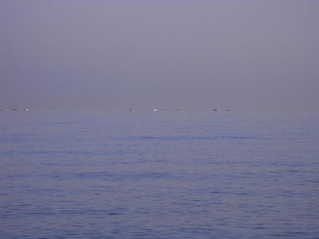 海岸09.jpg