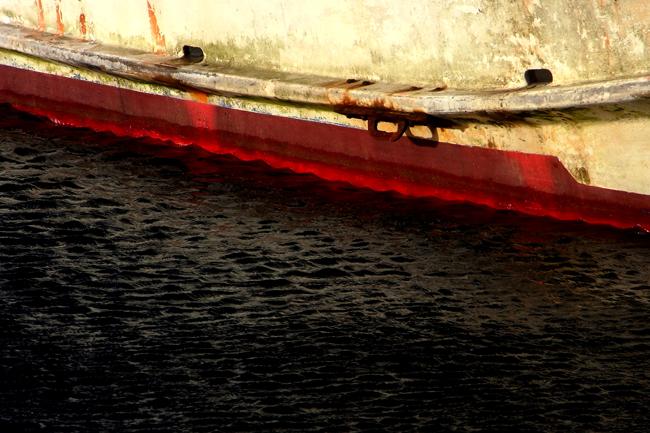 稲鯨60.jpg