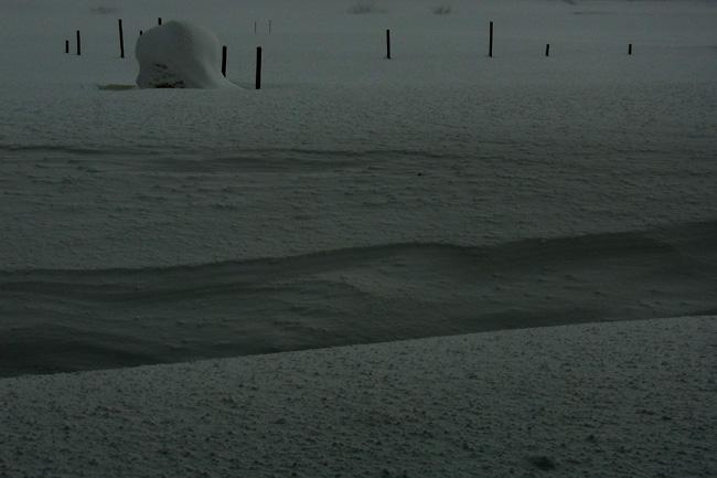 雪原05.jpg