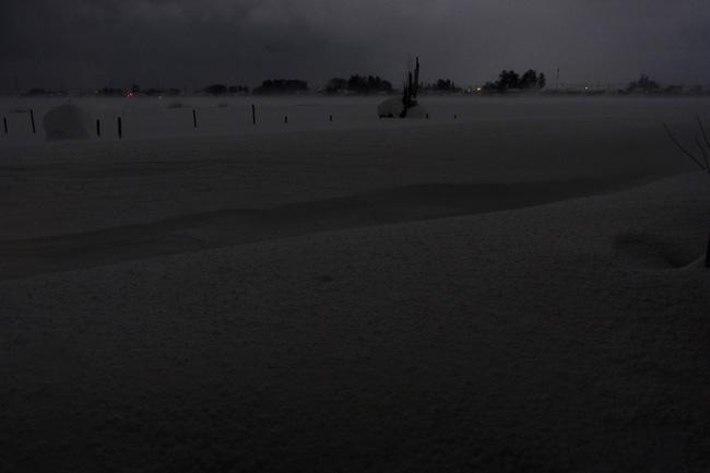 雪原08.jpg