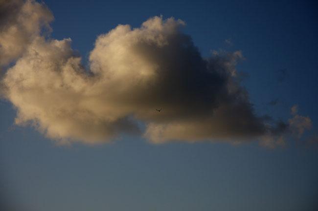 雲06.jpg